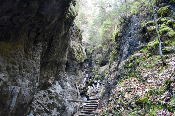 Slovak Paradise National Park: Experience canyons and ferrata tour