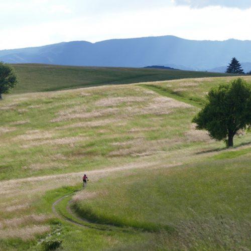 mountain biking slovakia